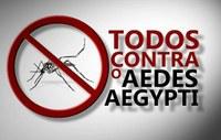 Vereadora Nathália Braga indica à Prefeitura ação de combate ao mosquito Aedes Aegypti